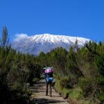 Kilimanjaro 44