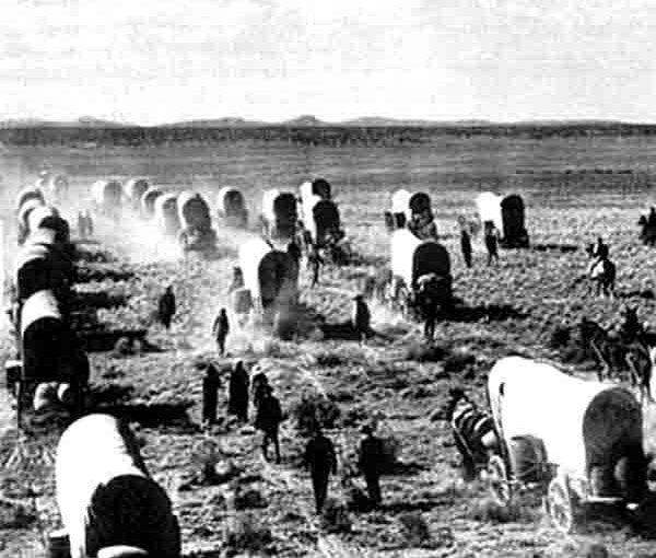 On Leading Pioneers versus Settlers